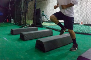 Glenn Zielinski's Saddleback School of Baseball functional strenth and weighted ball training